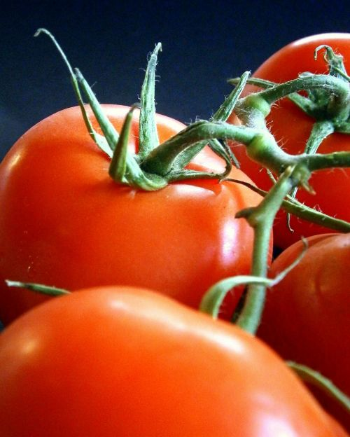 tomatoes vegetables healthy