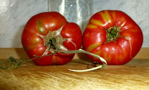 tomatoes red old variety