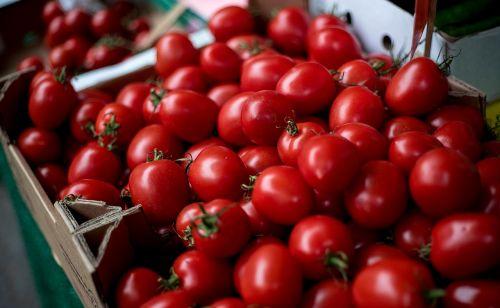 tomatoes vegetables cherry tomato