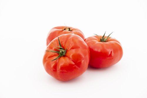 tomatoes  tomato  nachtschattengewächs
