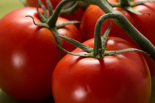 tomatoes  red  food