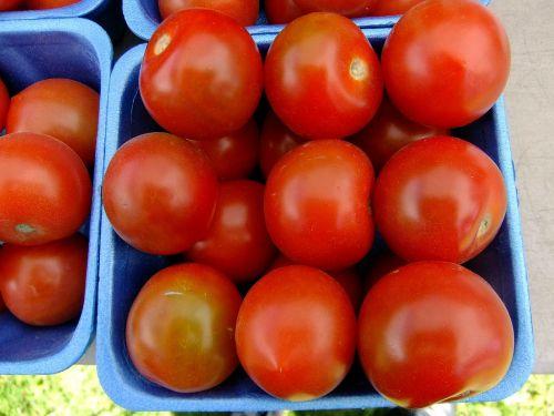 tomatoes fruit garden