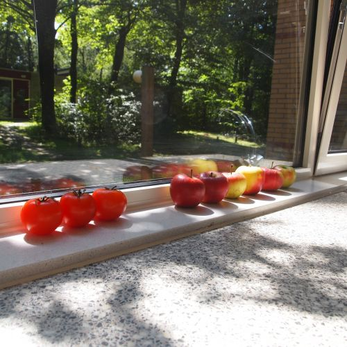 tomatoes apples window sill