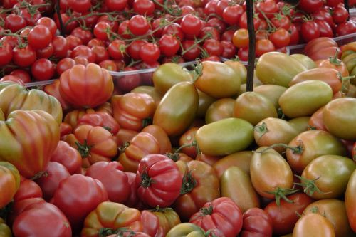 tomatoes vegetables market