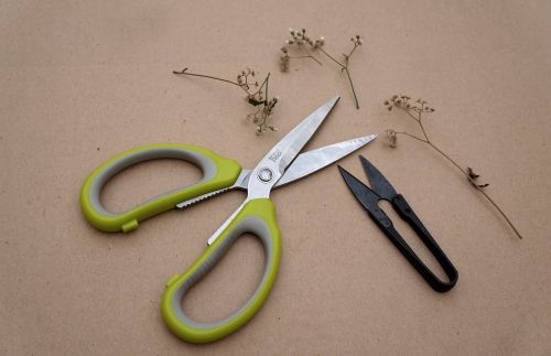 tools craft the scissors