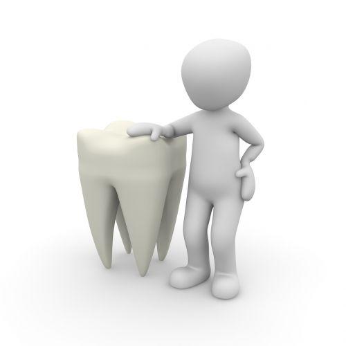 tooth dentist close