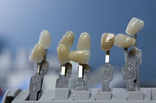 tooth dentist dental