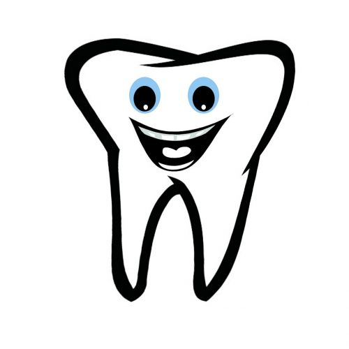 tooth dental dentist