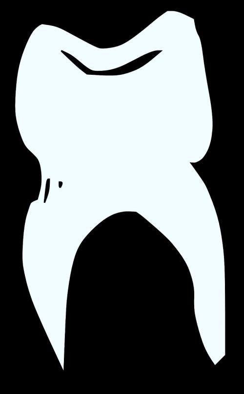 tooth dentist white