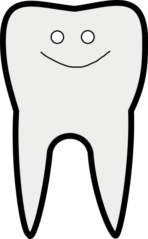 tooth dental care happy