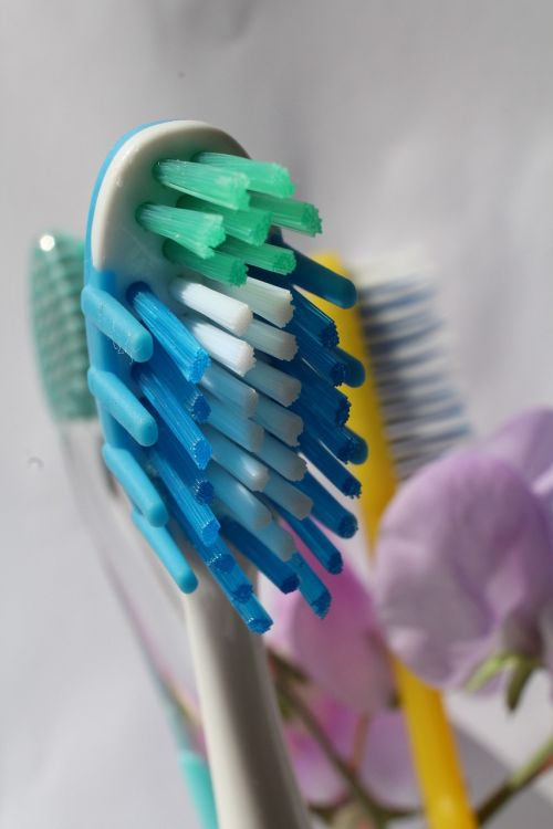 toothbrush oral dental
