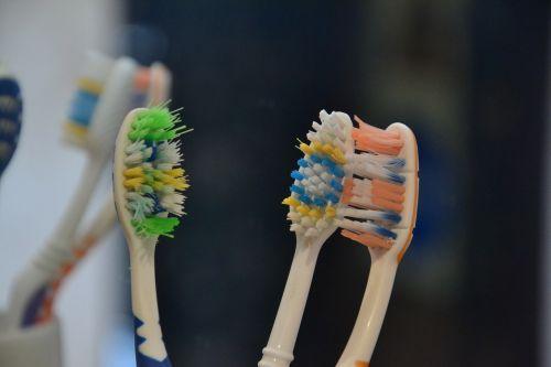 toothbrush brush brushes