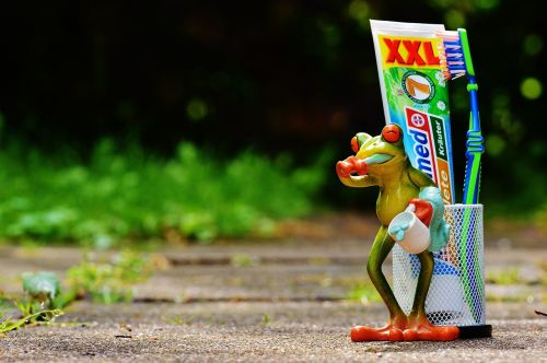 toothpaste frog toothbrush