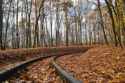 tor  narrow-gauge track  autumn