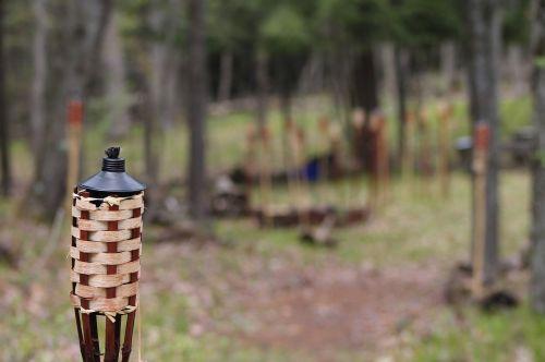 torch fire woods