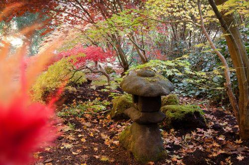toro lantern stone