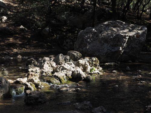 torrente de coanegra river water