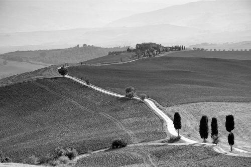 toscana landscape tuscany countryside