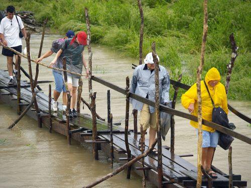 tourists amazonas river walkway