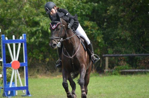 tournament ride equestrian horse