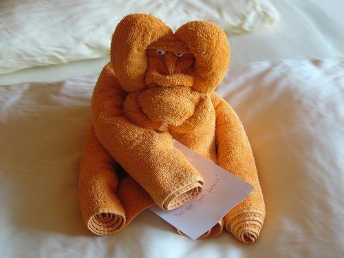 towel monkey greeting