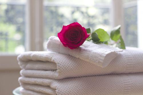 towel rose clean