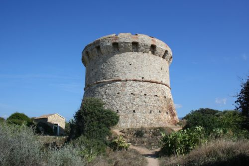 tower corsican maquis