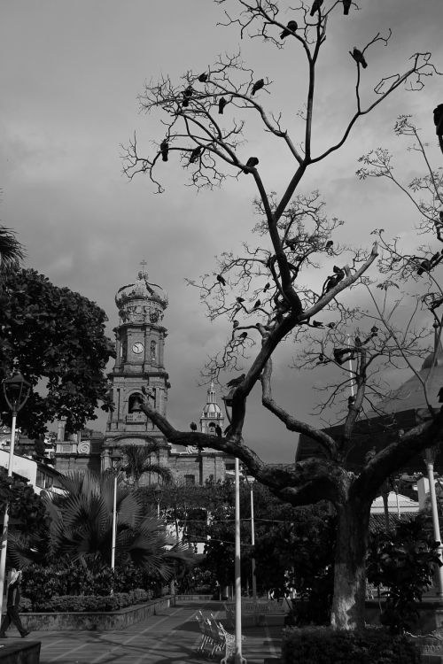 town church black and withe