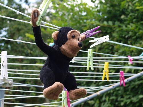 toy chimp washing