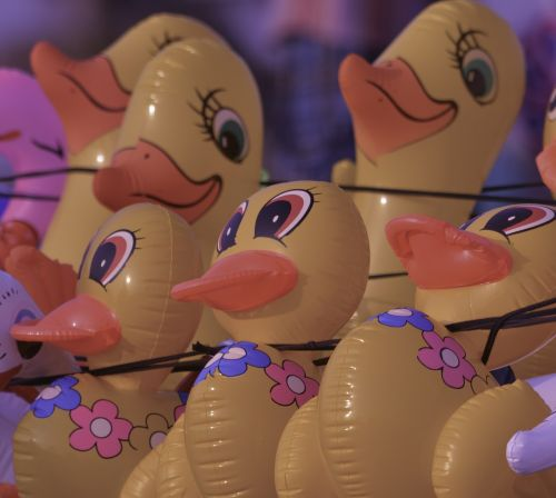 toy duckling kids
