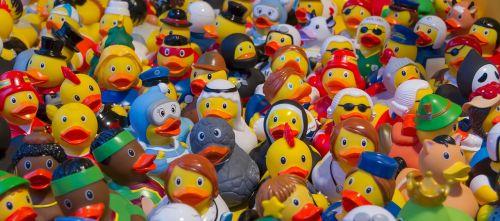 toy ducks plastic toys
