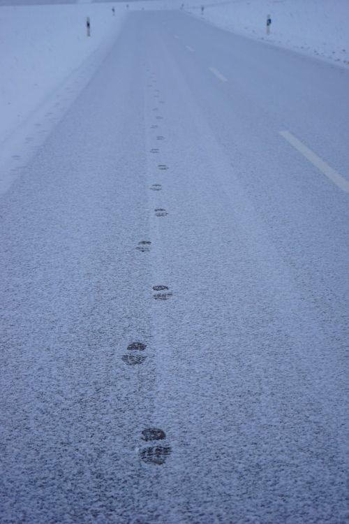 traces snow road