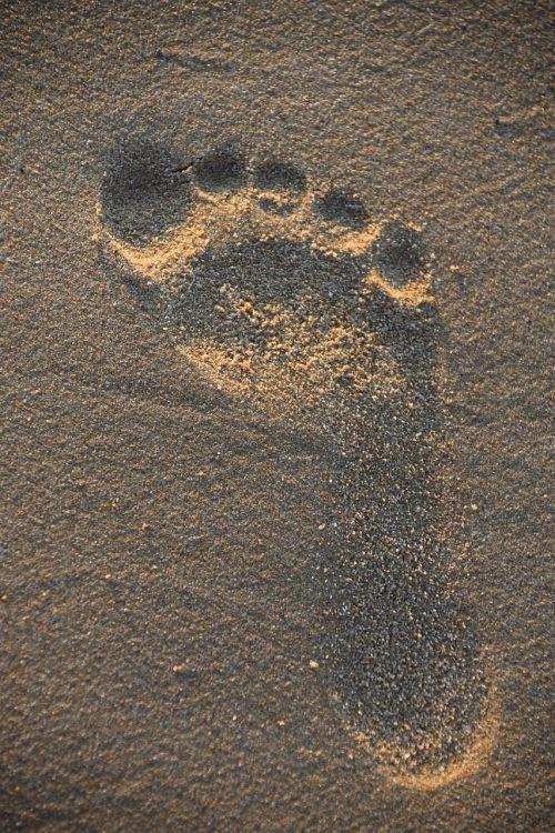 traces sand pilot beach resort