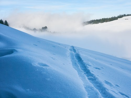 traces  snow  fog