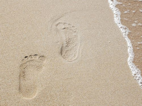 traces,sand,sea,trace,beach,tracks in the sand,footprint,footprints,reprint,feet,sand beach,footprints in the sand,away,accompaniment,accompanied