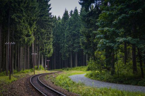 trasa,miškas,Vokietija,kelias,siauras geležinkelis