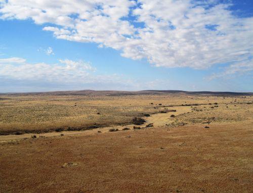 Track In The Desert