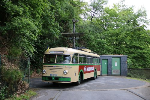 trackless trolley  trolley bus  transport