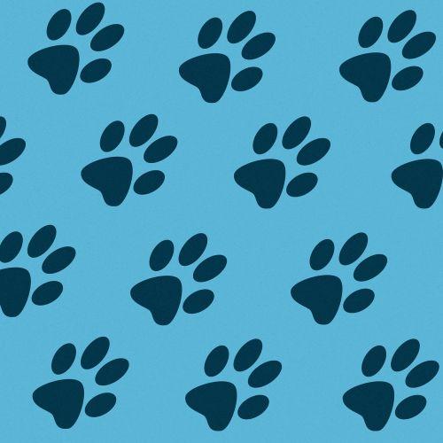 tracks paw prints cat paws