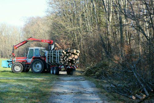 traktorius,traktoriai,miškas,log-priekaba,mediena,transporto priemonė,eismas,transporto priemonė,transportas,priekabos,komercinė transporto priemonė,laukas,pieva,žemė,ūkis,miškininkystės darbai,miškininkystė