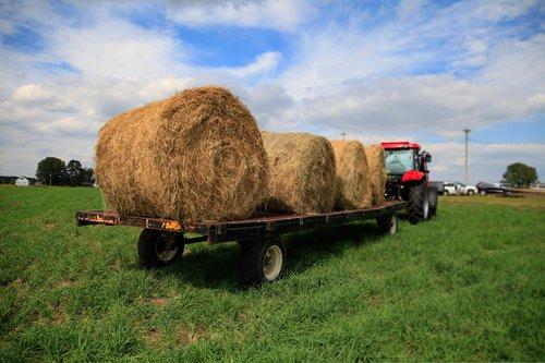 tractor  vale  hay