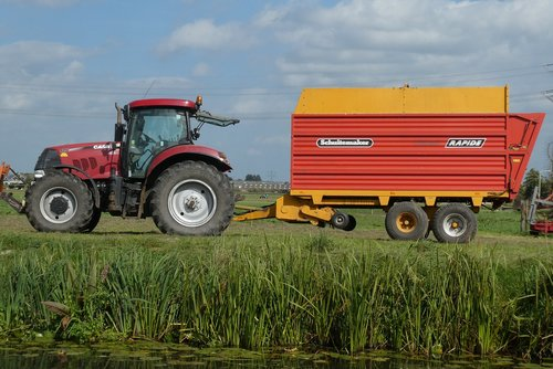 tractor  pasture  whey