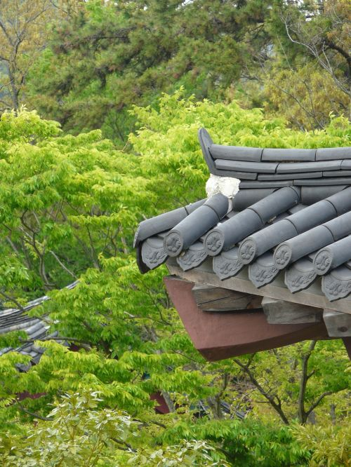 traditional roof tile landscape