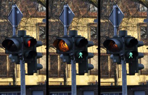 traffic light signal pedestrian