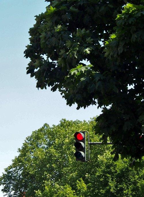 traffic lights  traffic control  red