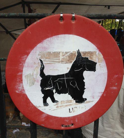 traffic sign dog strange