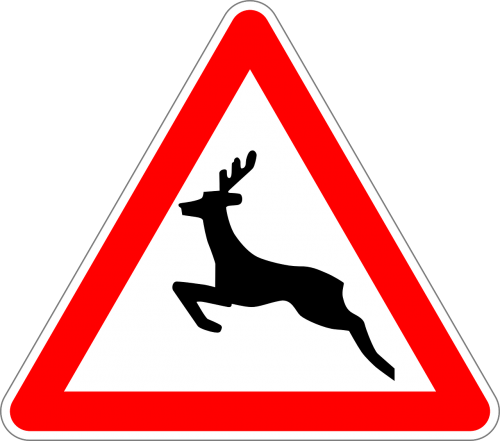 traffic sign sign wild animals crossing