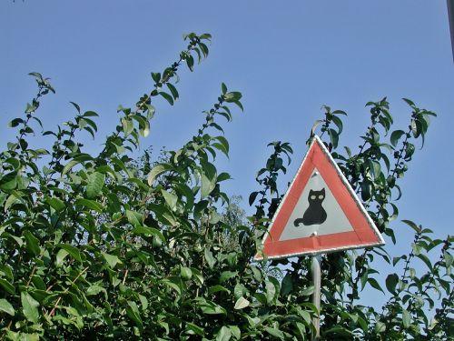 traffic sign shield humor