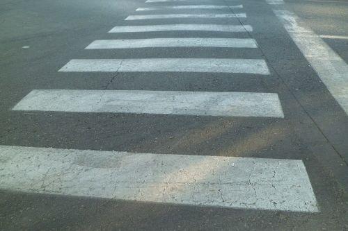 traffic signal zebra transit