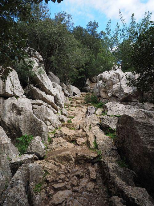 trail rock limestone